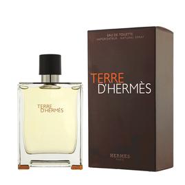 Hermes - Terre D'Hermes